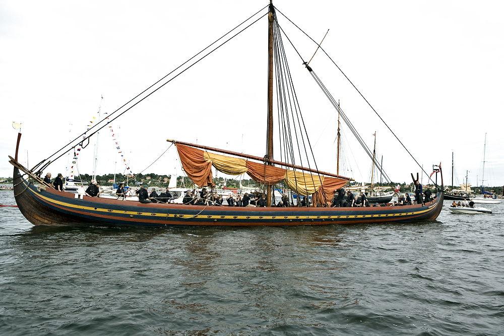 Vikinger (Faktalink light)   faktalink